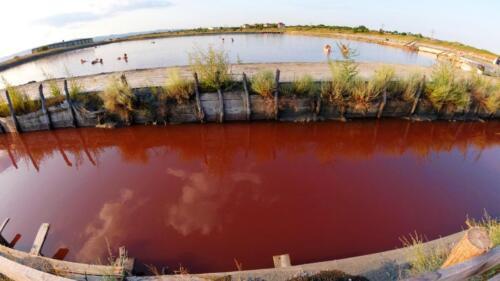 Червеният цвят на Бургаските солници